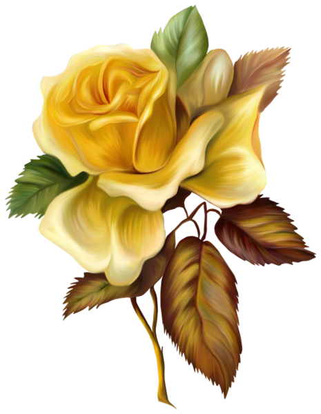 Yellow Rose Painted Picture Clipart Картины роз