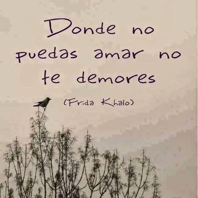Donde no puedas amar no te detengas | Frase de frida kahlo, Frases ...