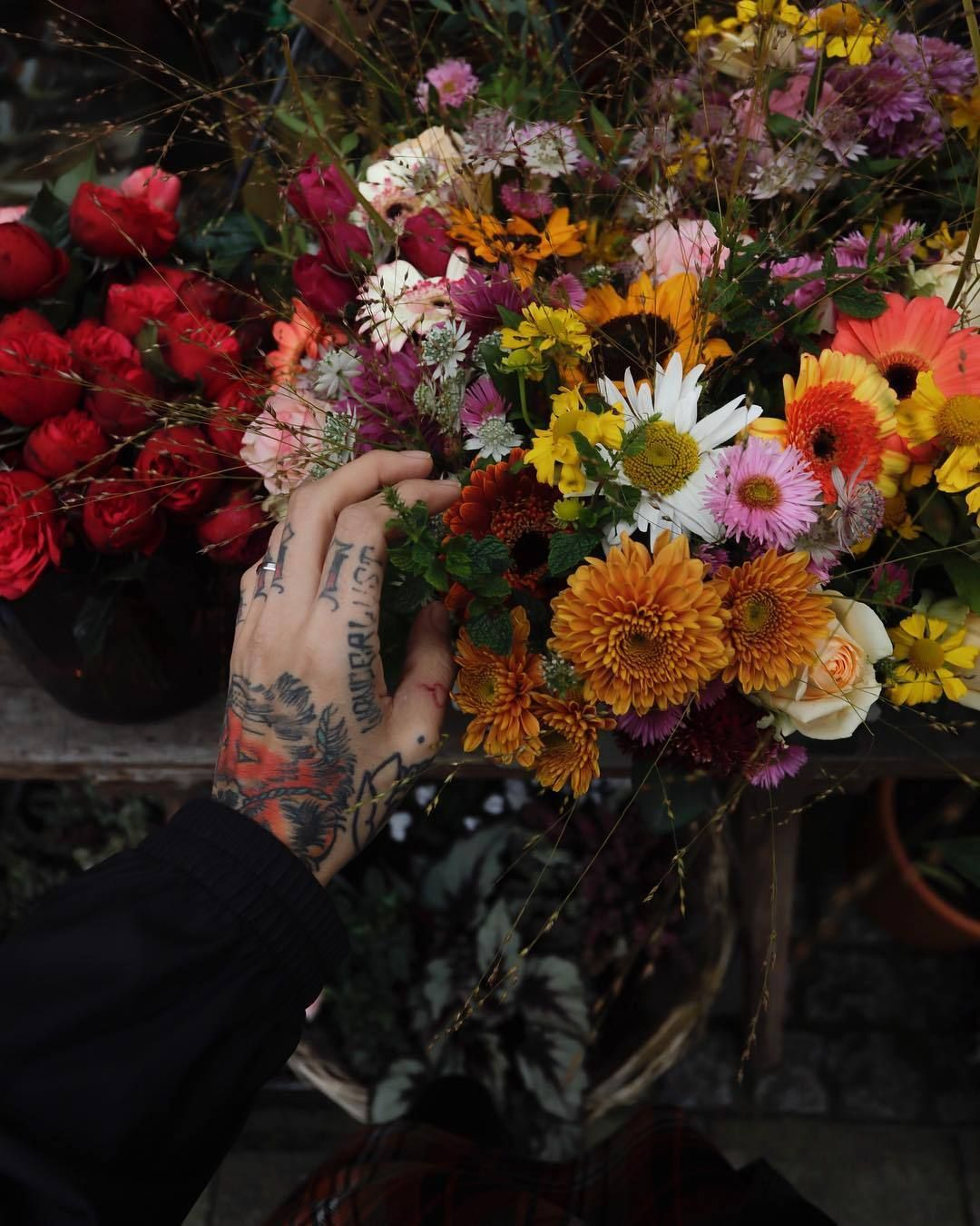 Pin By Catherine Ames On It S Me Flower Aesthetic Flowers Aesthetic