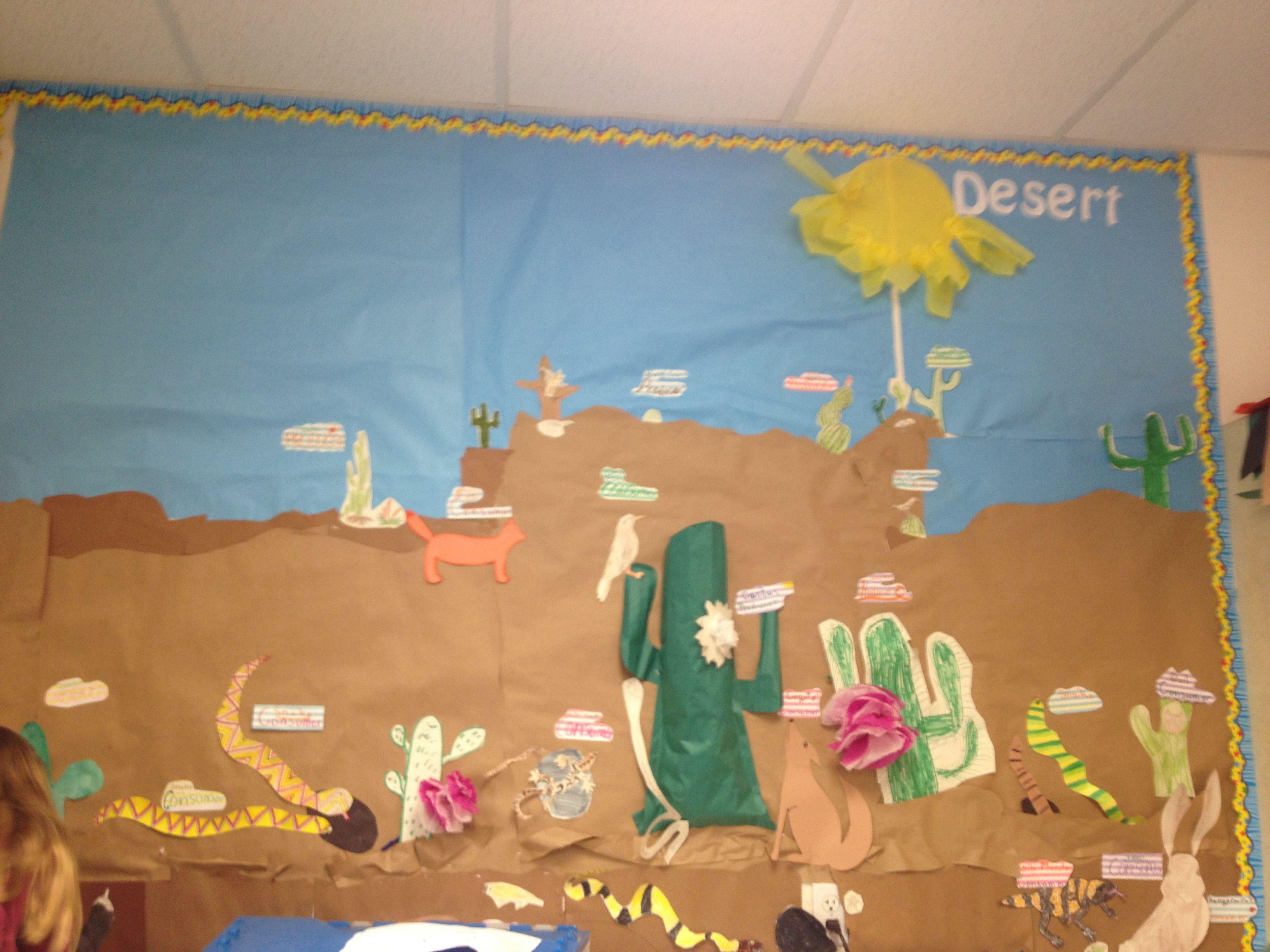 Desert bulletin board to learn about animals Classroom