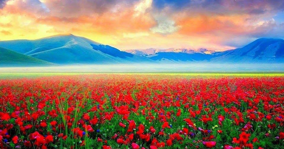 gambar alam yg paling indah Pemandangan, Alam, Gambar
