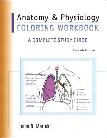 Anatomy Physiology Coloring Book (Elaine Nicpon Marieb) | Used Books ...