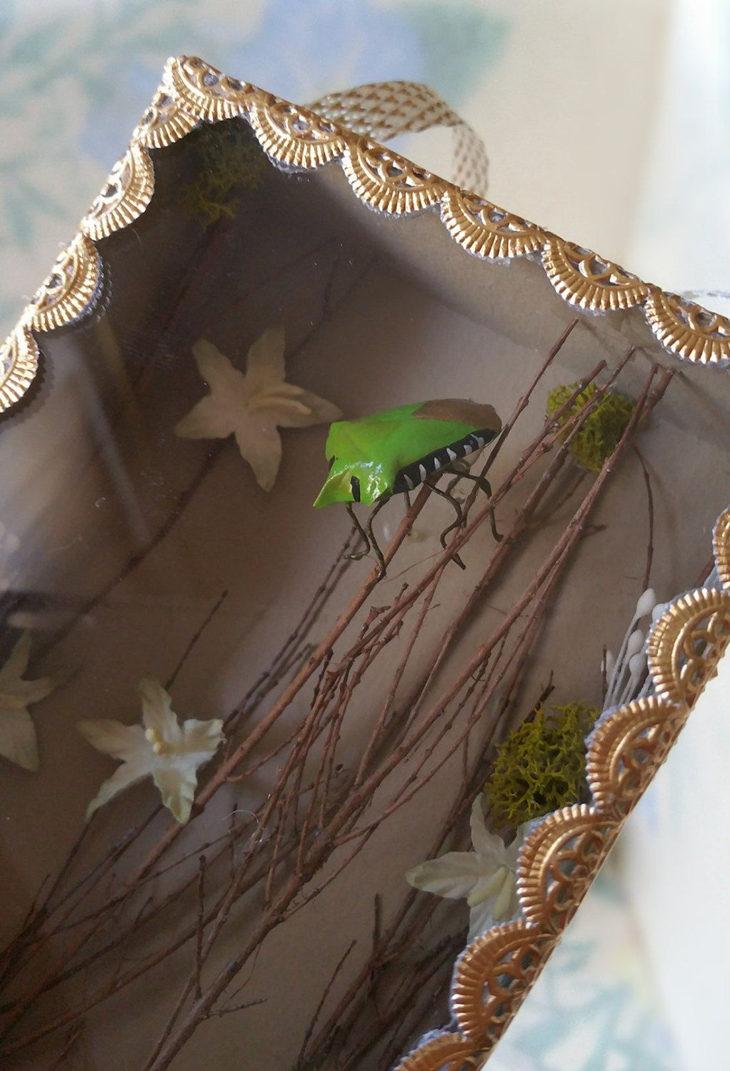 Unique and Charming Stink Bug Shadow Box with Vintage Wallpaper, Ribbon and…
