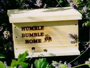 Humble Bumble Observation Home Would Love This Bumble Bird Houses Humble