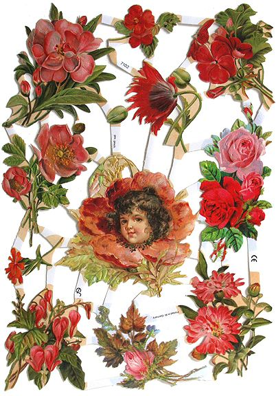 Flowers Paper Scrap Die Cut Reliefs Roses Lithograph EF Germany