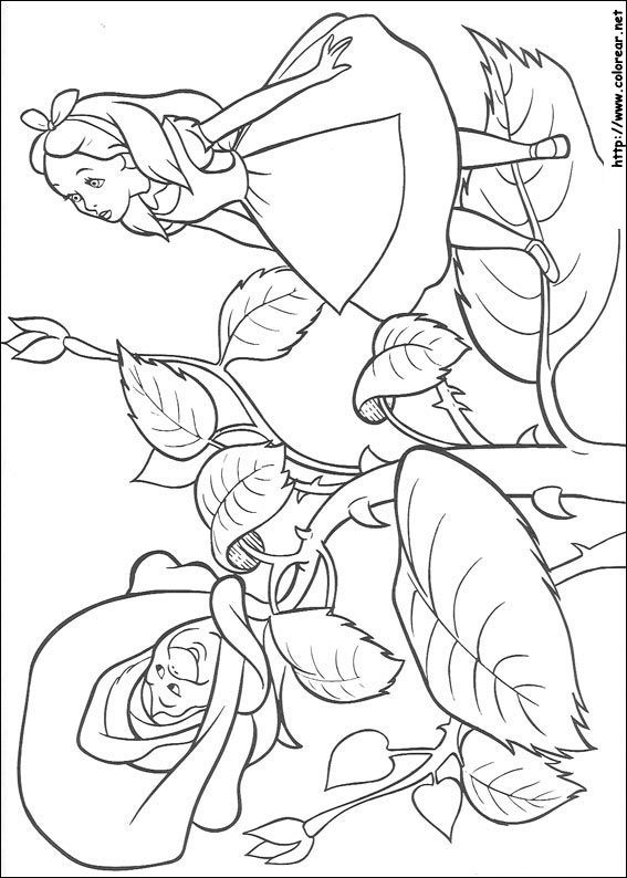 Alicia entre las flores | dibujos para colorear | Pinterest | Alice ...
