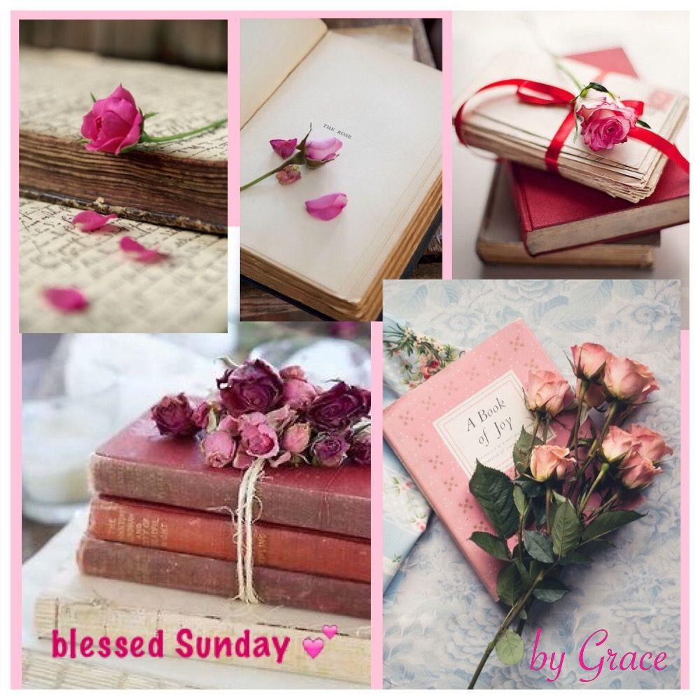 Lovely Sunday  ✨