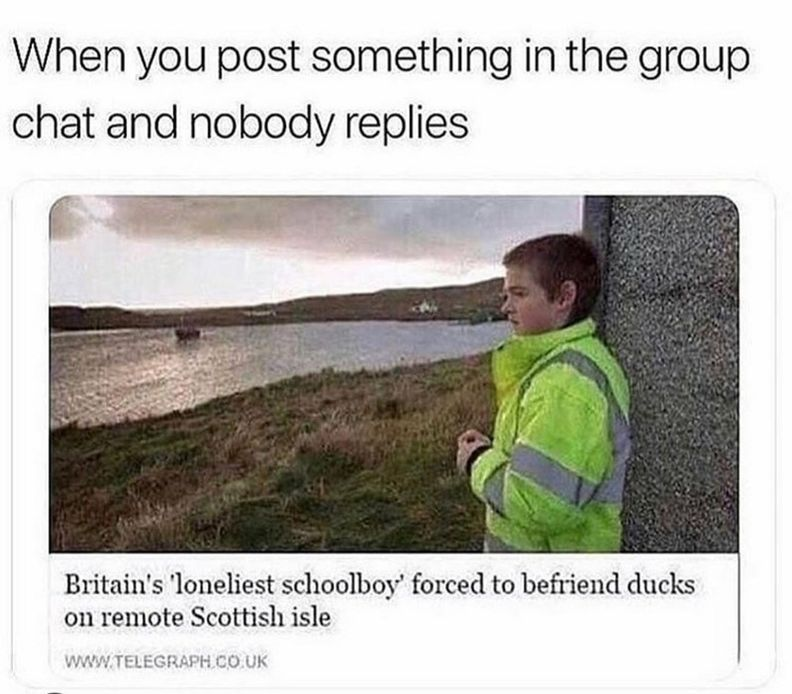 Memes To Send To The Group Chat Memes Memeshilariouscantstoplaughing Really Funny Memes Cute Memes Aesthetic Memes