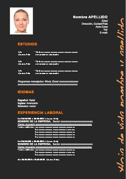 Curriculum Vitae Para Completar Modelos De Curriculum Vitae Plantilla De Curriculum Vitae Formato De Curriculum Vitae