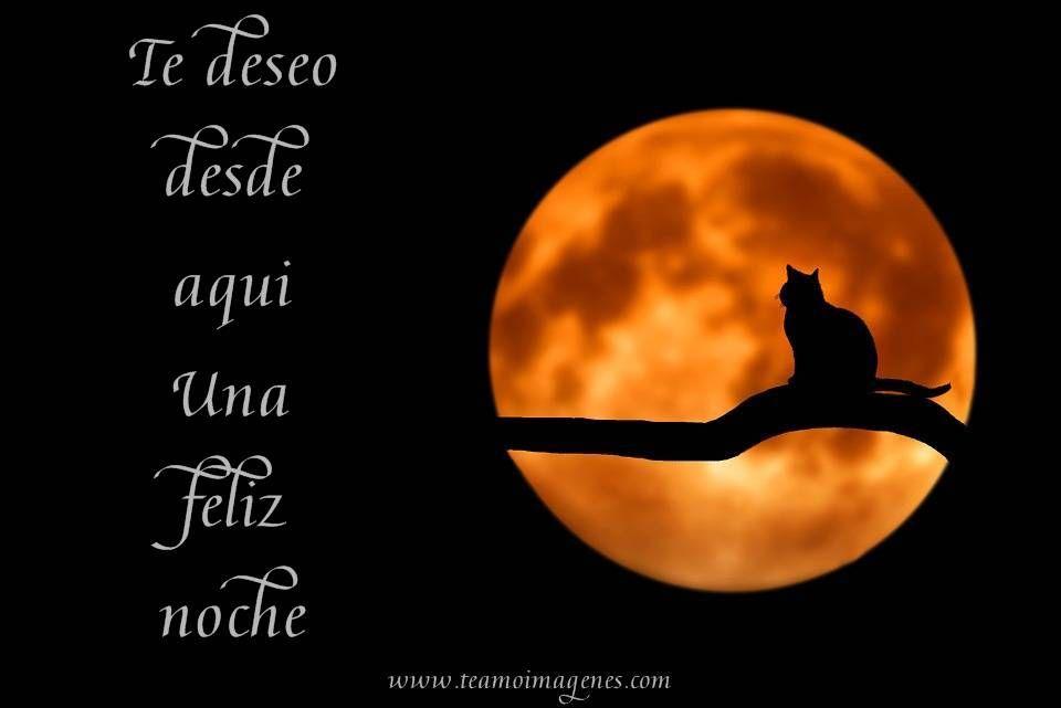 Imágenes Para Desear Buenas Noches A Alguien Especial