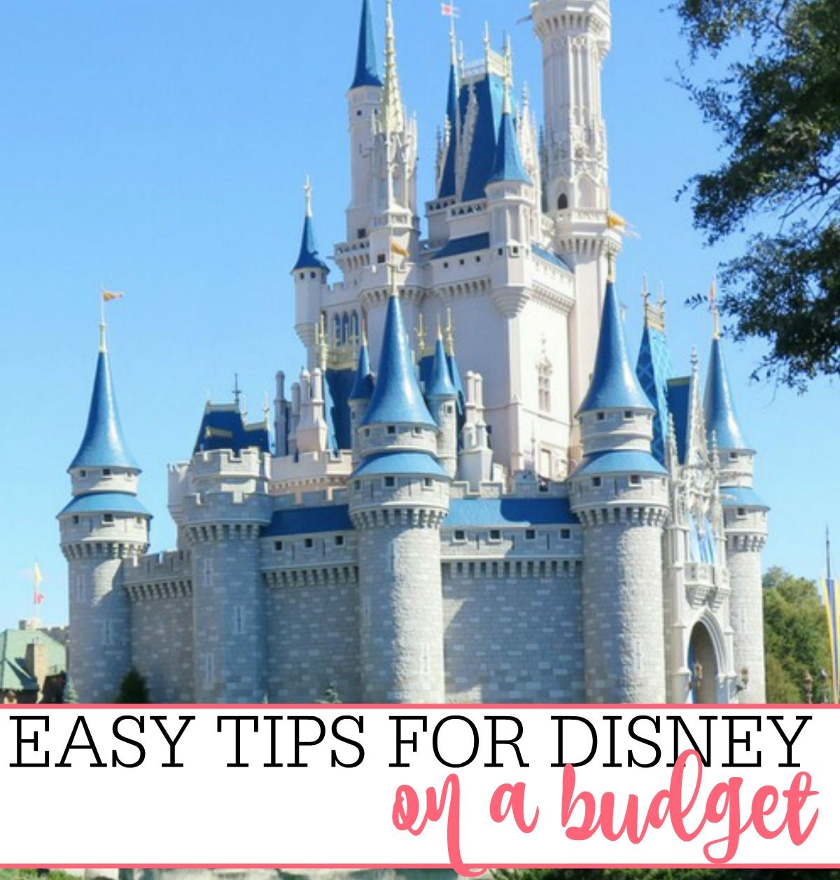 Easy Tips For Disney On A Budget  Disney on a budget