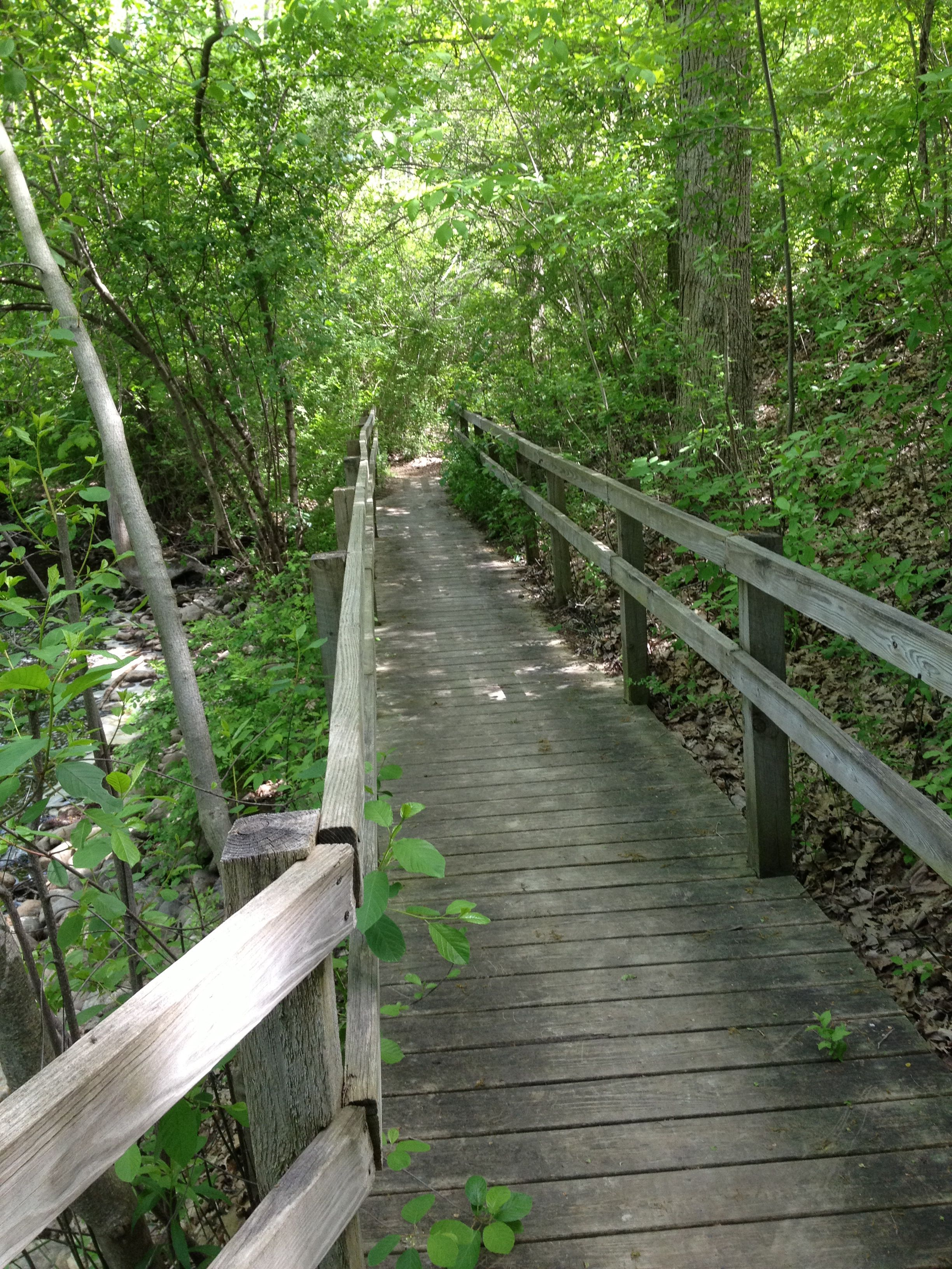 Paint Creek Trail, Rochester, MI (With images) Outdoor