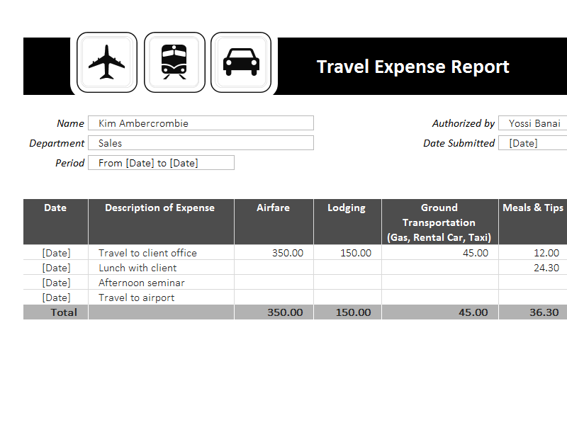 travel expense report template resume examples pinterest