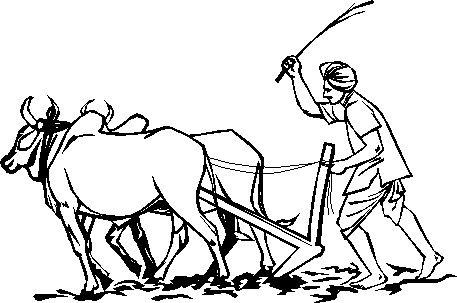 Indian farmers life essay