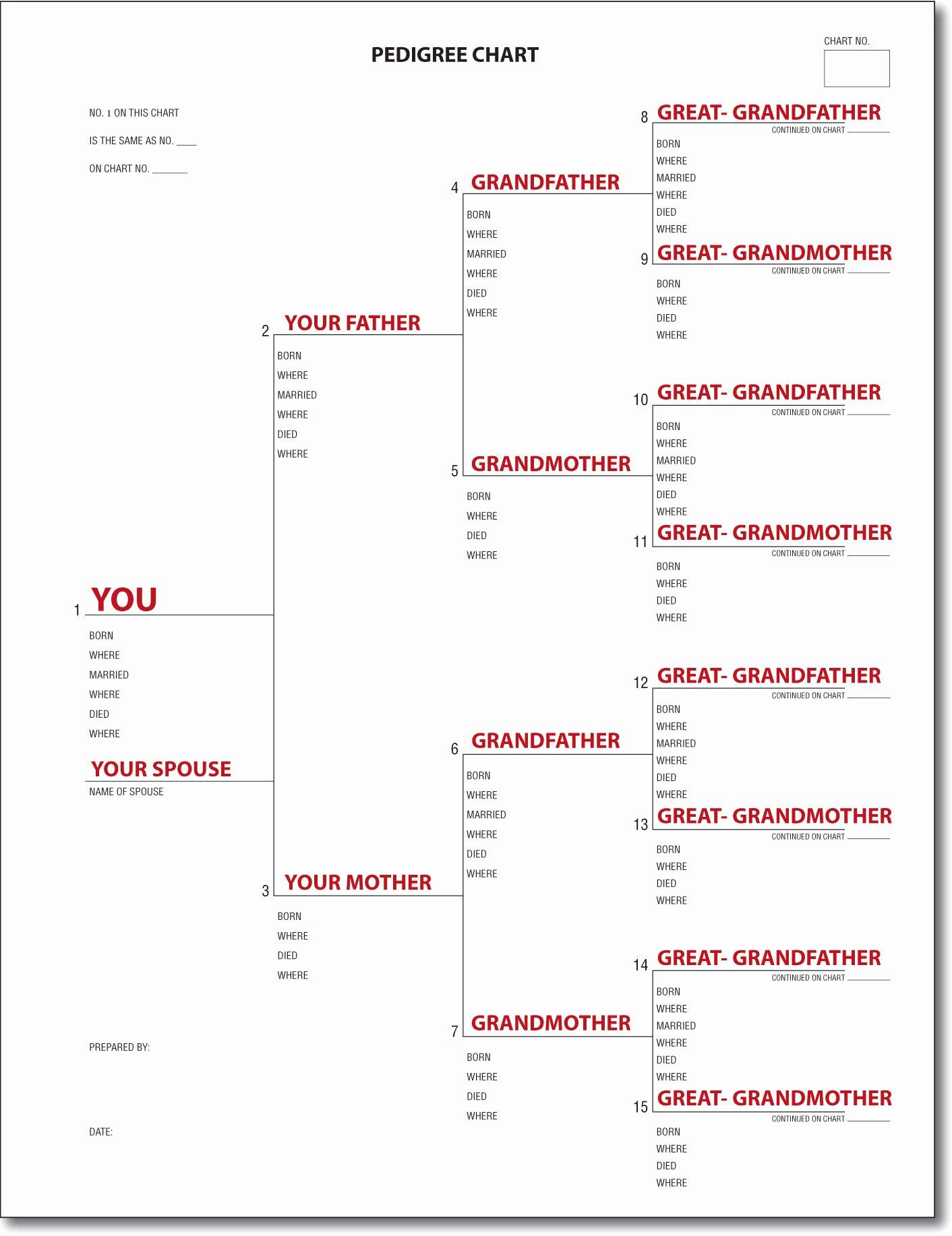 Example Of Family Tree Chart New A Pedigree Chart In