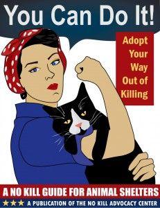 No Kill Animal Shelters Reportanimalabuse Rescueanimals