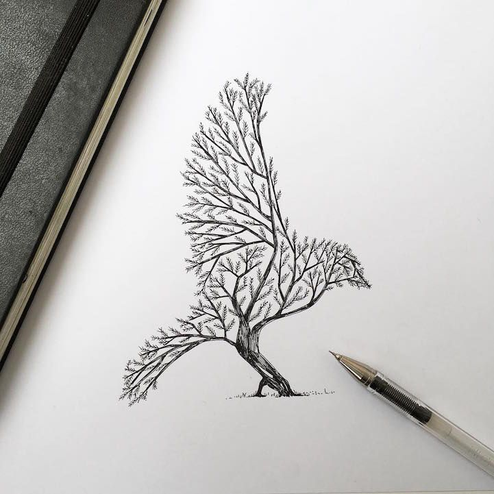 Intricate Pen Drawings Interweave Elements of the Natural World