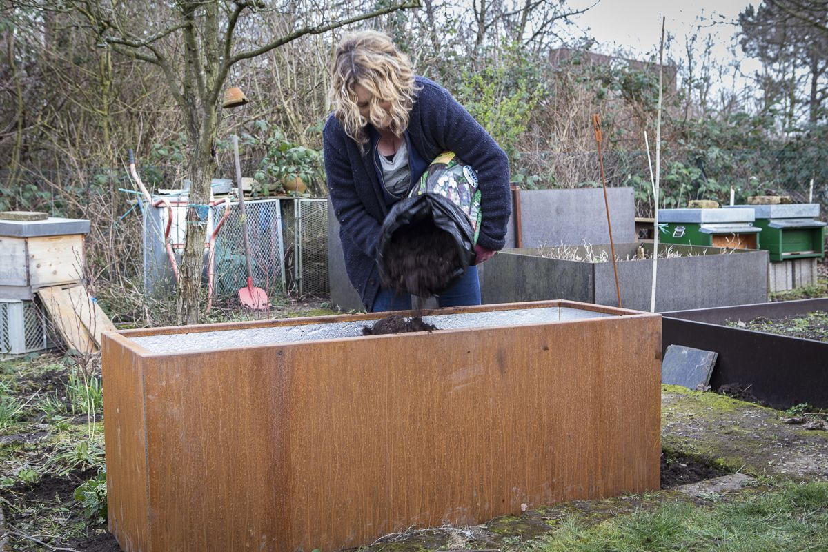 Hochbeet Aus Metall Kaufen Hochbeet Hochbeet Aus Metall Holz Im Garten