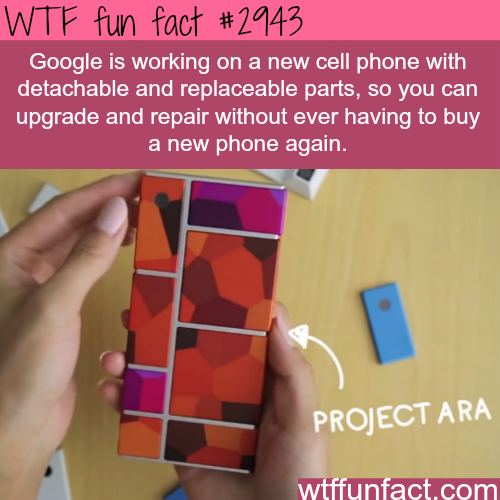 cell phone fun facts Project Ara, the detachable cell phone - fun facts | Interesting ...