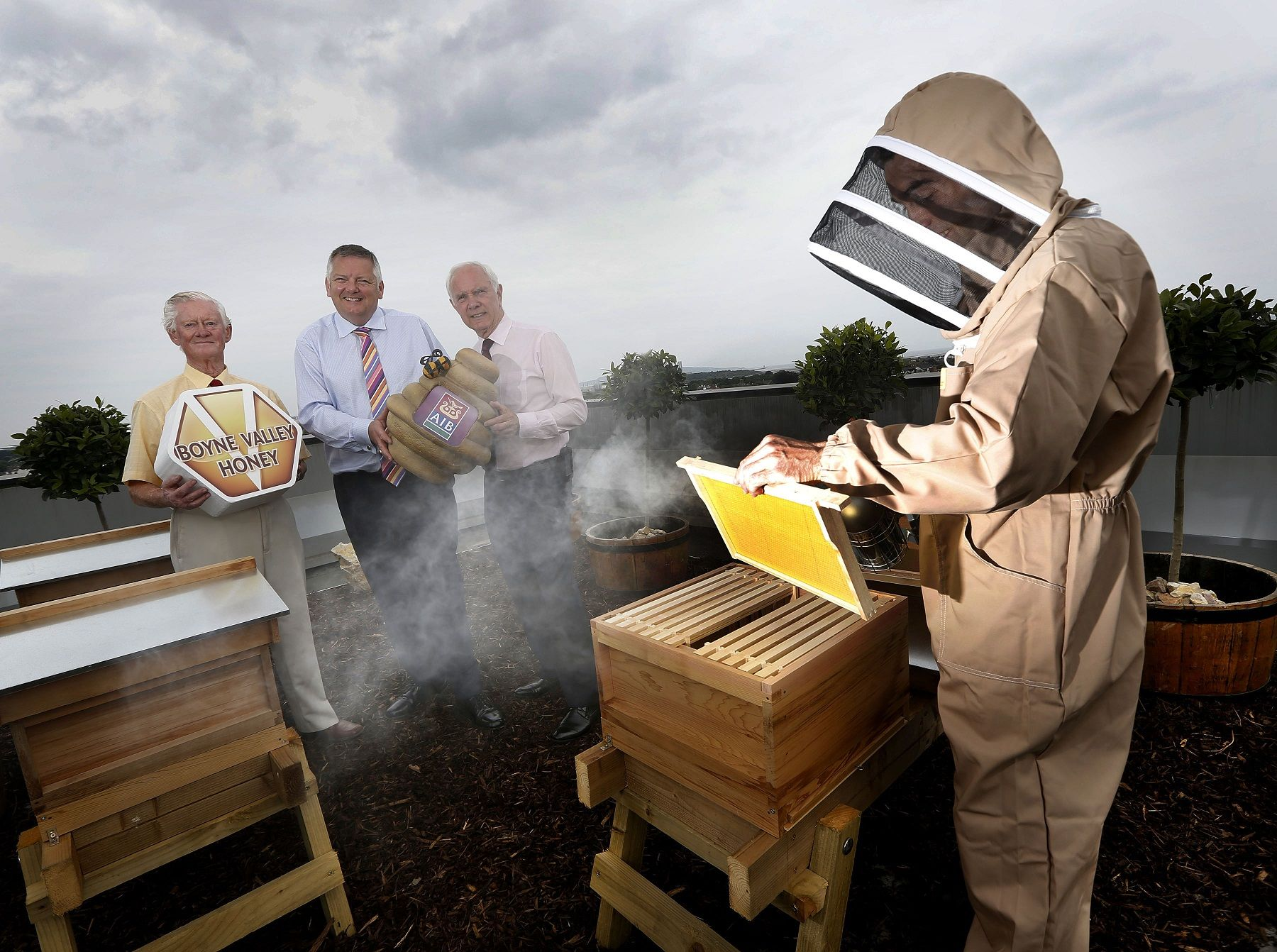 Rooftop Apiary in Dublin City 2