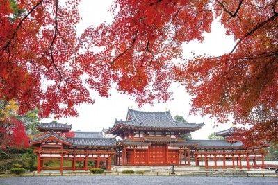 10円玉のデザインで有名な平等院鳳凰堂、紅葉越しの風景は格別!(東京ウォーカー) - Yahoo!ニュース