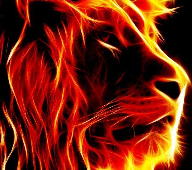 En vuur leeuw