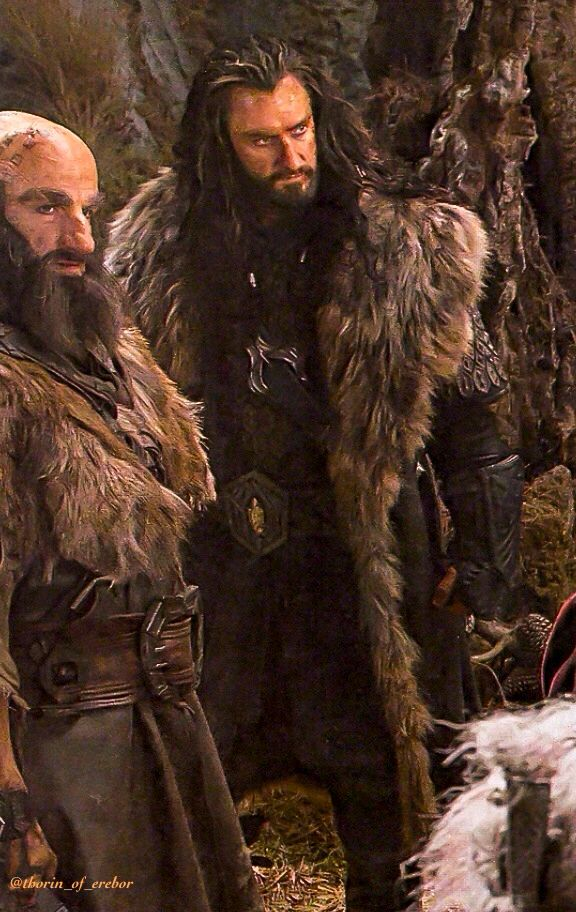 Thorin the Majestic and Dwalin