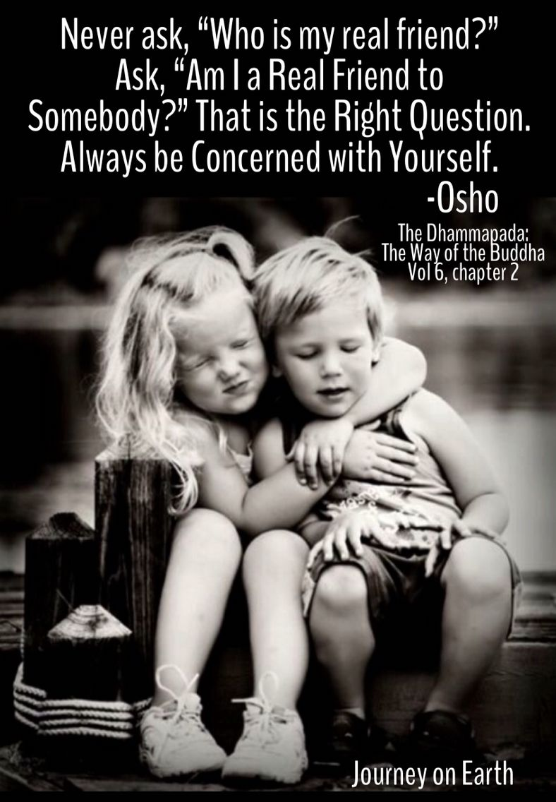 Buddha Quotes About Friendship Hug Day  Get Closer  Osho Real Friends And Buddha