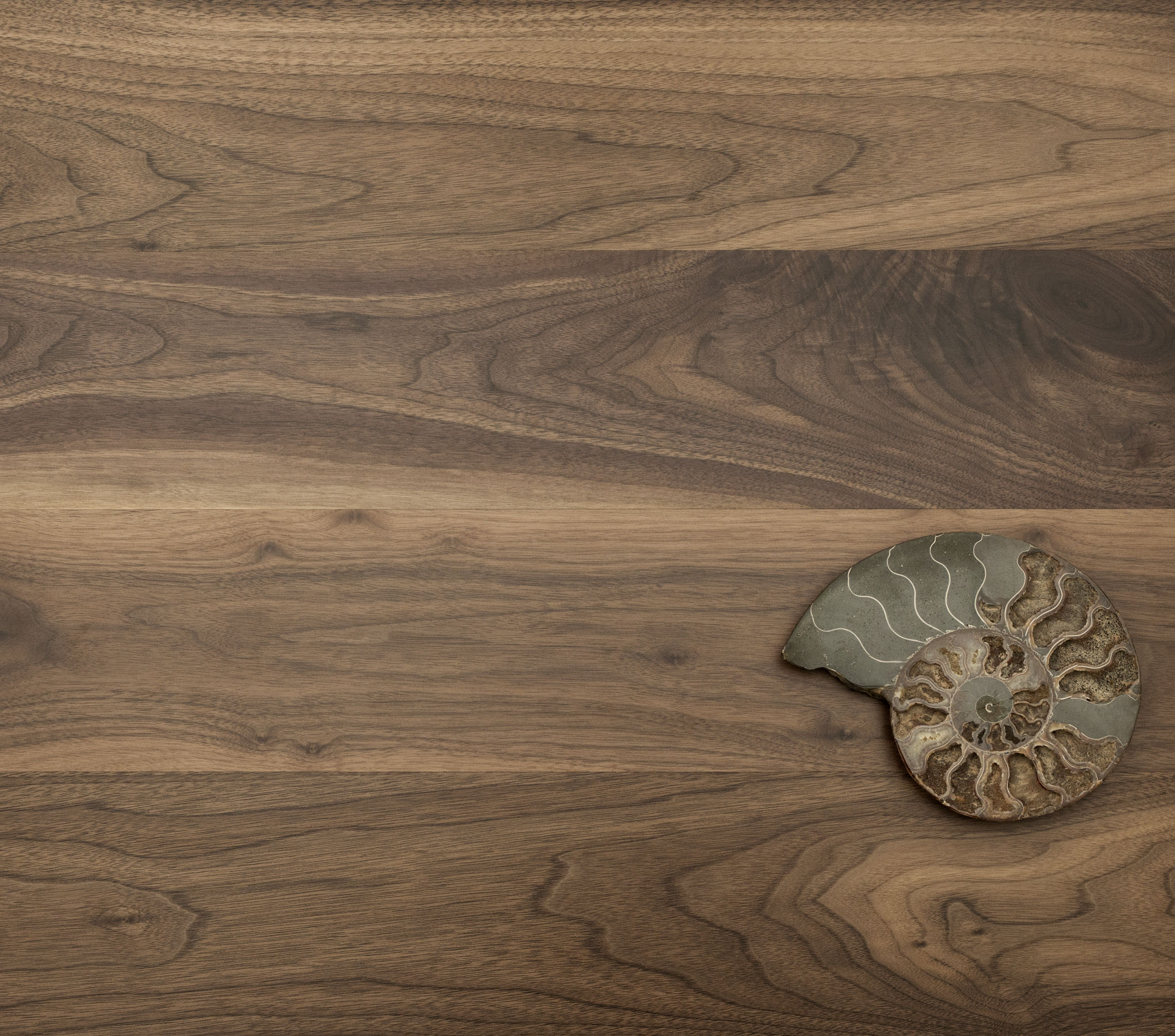 Eddie Bauer Hardwood Floors Town  Country Plank Natural - Black walnut hardwood flooring