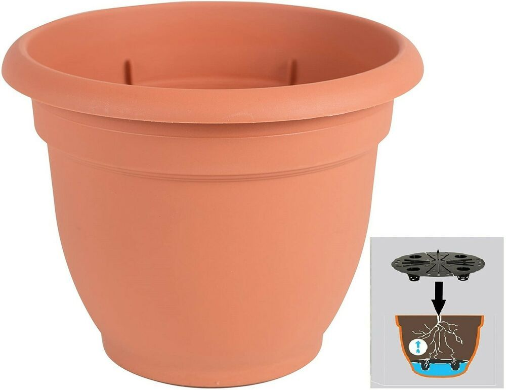 Round Planter Pot 6 Inch W Self Watering Grid Tray Insert 1 2 Gallon Terra Cotta Bloem In 2020 Planter Pots Self Watering Self Watering Planter