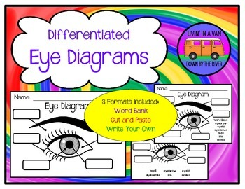 Eye diagram human eye student learning and diagram eye diagram ccuart Image collections