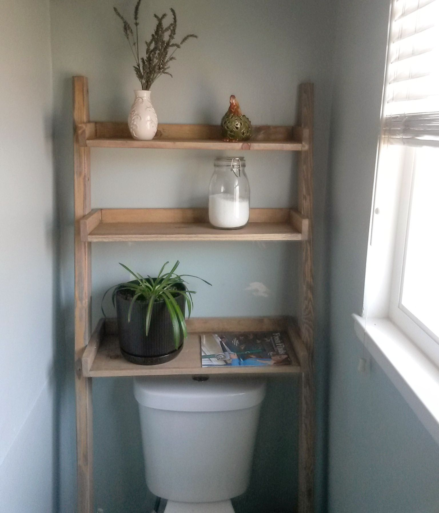 Storage Ladder Do It Yourself Home Projects From Ana White Shelves Over Toilet Bathroom Shelf Decor Bathroom Storage Shelves