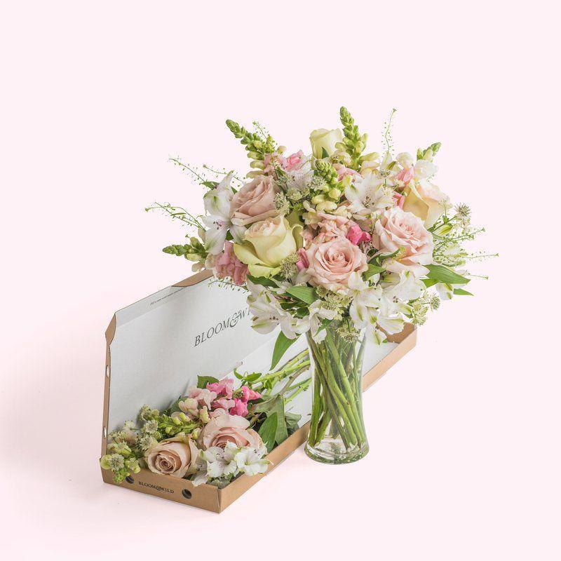 FREE Bloom & Wild Letterbox Bouquet - Gratisfaction UK in 2020 | Bloom and wild. Letterbox flowers. Flower delivery