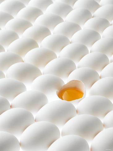 Fotodruck: Weiße Eier, auf der Seite liegend, eins geöffnet von Klaus Arras: 24x18in