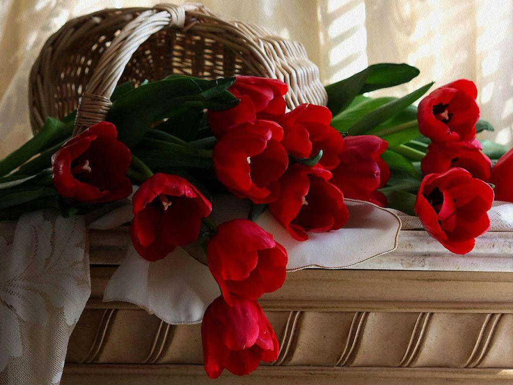 Корзина роз картинки с добрым утром