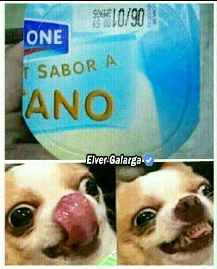 Rabdom Meme auf Spanisch
