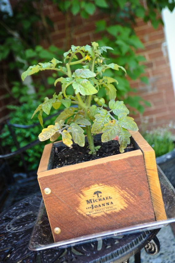 6 High Square Mini Raised Bed Garden by AForestersGarden on Etsy