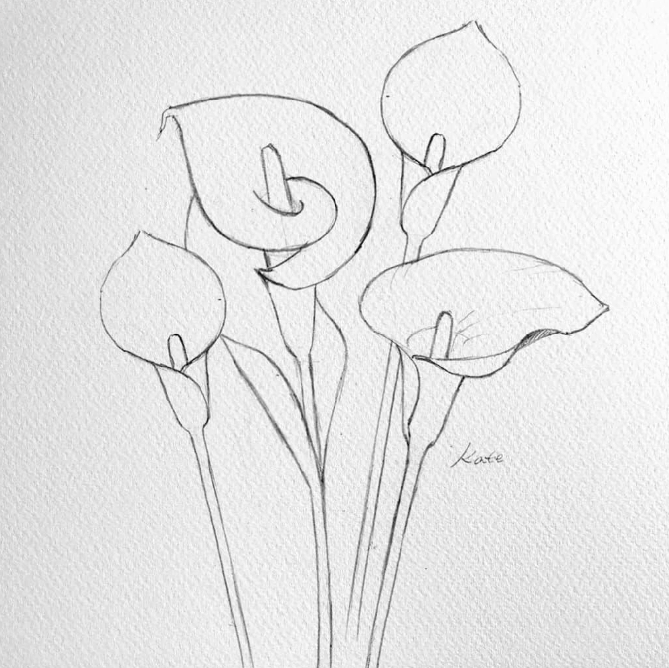 How To Draw Flowers In 2020 Flower Drawing Tutorials Flower