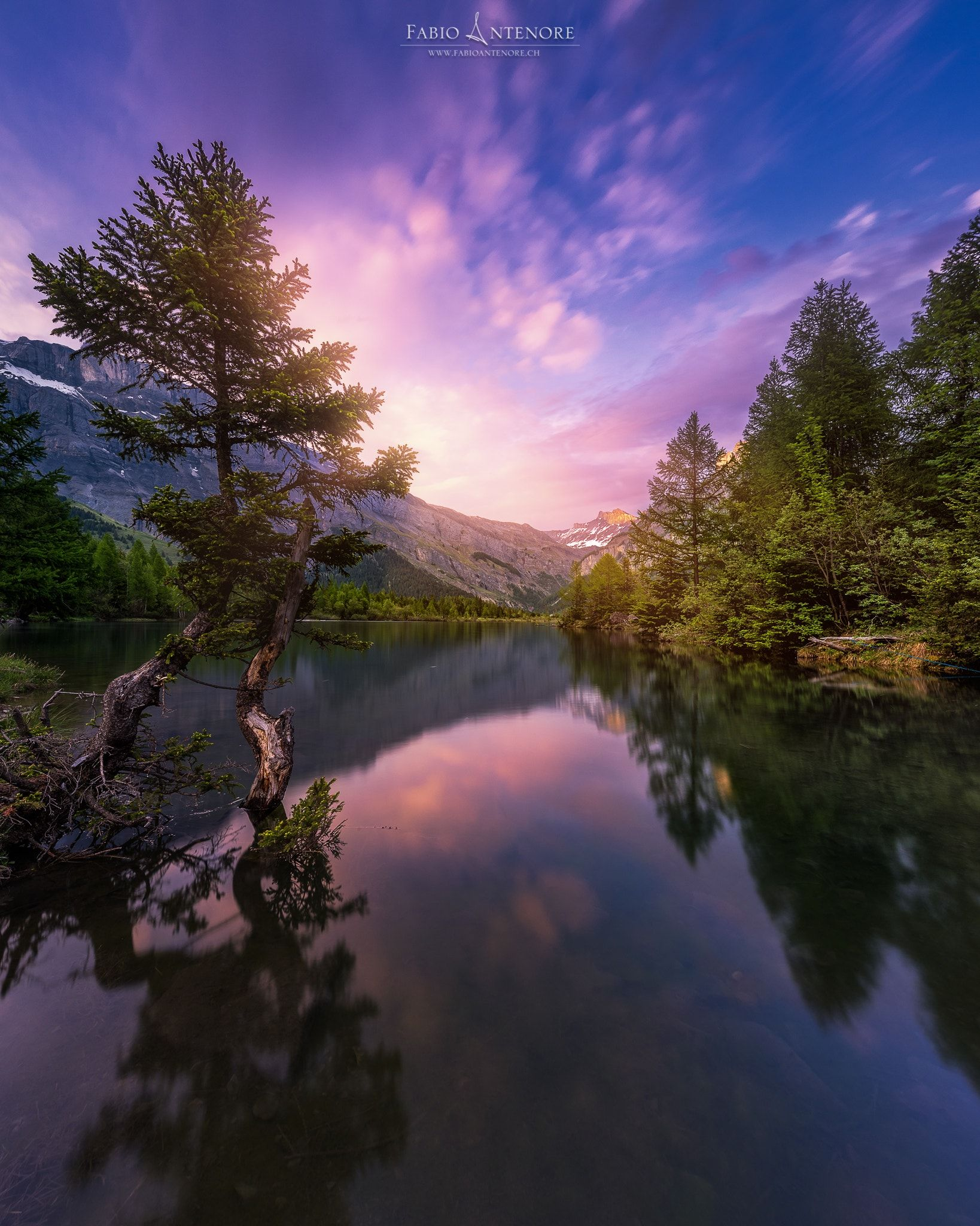 The Lake And The Tree Lake Beautiful Landscapes Landscape Photography