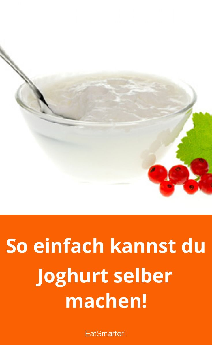 So einfach kannst du Joghurt selber machen!