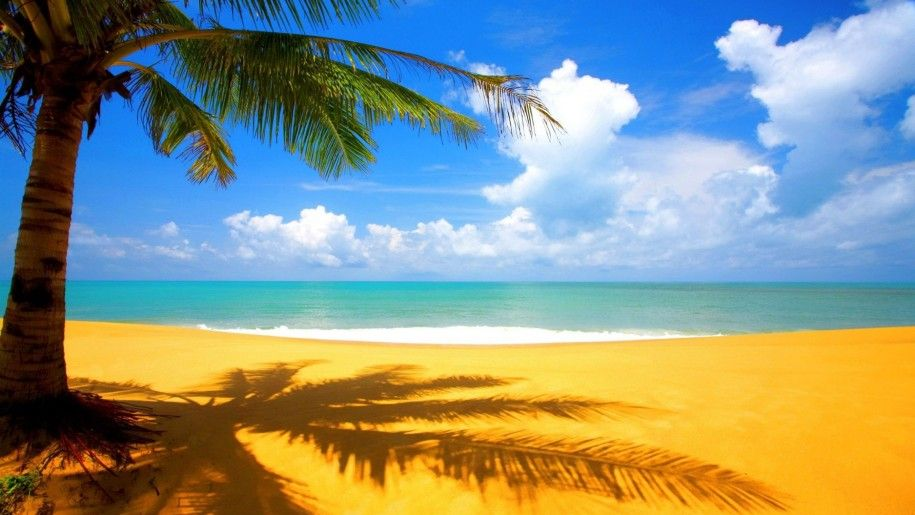 Hawaii Beach Hd Wallpaper 2880 1800 In 2020 Beach Wallpaper Beautiful Beaches Beach