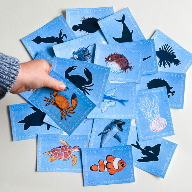 graphic relating to Printable Match Games titled Sea Pets Printable Memory Matching Video game for Small children