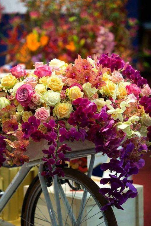 Fond D Ecran Bouquets Fleurs Flowers Wallpapers Roses Flowers