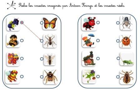 Bien connu Thème de juin : Les insectes, autour des albums d'Antoon Krings  LC58