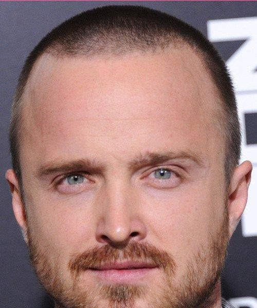 39+ Hairstyles for balding men with beards trends