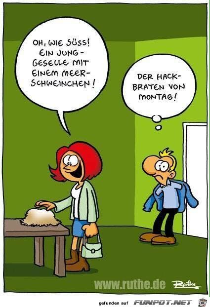 Pärchen Lustig