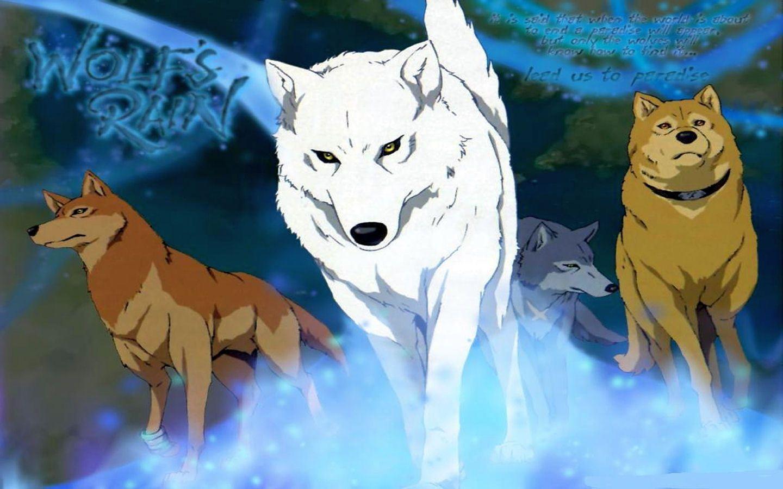 Wolfs Rain Wallpapers Wallpaper Cave Wolf S Rain Anime Wolf Rain Wallpapers