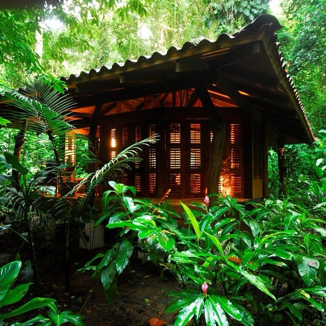 Osa Peninsula Costa Rica Hotels: Talk About A Getaway! A Private Bungalow In The Middle Of