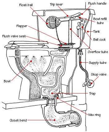Toilet Function Diagram
