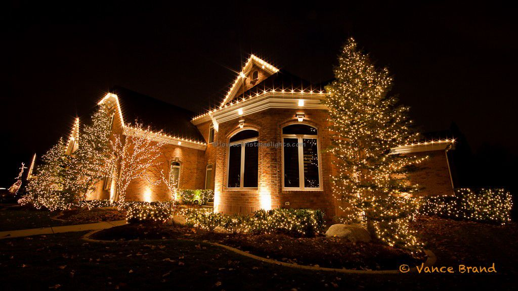 The trees and bushes are decorated with Christmas lights. - The Trees And Bushes Are Decorated With Christmas Lights. Places